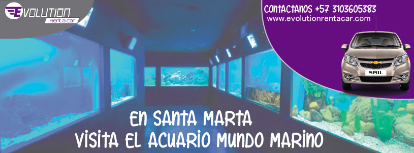 Acuario Mundo Marino con Evolution Rent A Car Alquiler de vehículos en Santa Marta