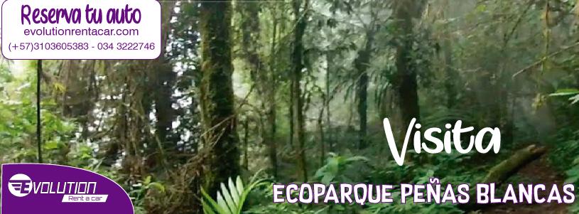 Visita el Ecoparque Peñas Blancas- Alquiler de Carros  Económicos en Pereira